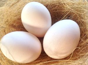 2014-04 Påsk - ägg2